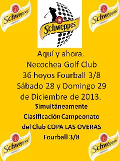 Copa Schweppes